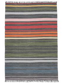 Rainbow Stripe - 회색 러그 140X200 정품  모던 수제 다크 그레이/올리브 그린 (면화, 인도)