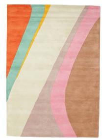 Dynamic Handtufted - 핑크색 러그 160X230 모던 베이지/러스트 레드 (울, 인도)