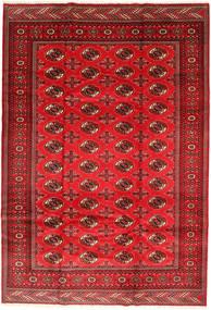 Turkaman 러그 201X293 정품 오리엔탈 수제 러스트 레드/다크 레드/크림슨 레드 (울, 페르시아/이란)