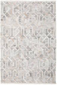 야외 카펫 Trinny - 갈색/Nature 러그 200X300 정품  모던 수제 라이트 그레이 ( 인도)