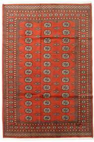 파키스탄 보카라 2Ply 러그 169X252 정품  오리엔탈 수제 다크 브라운/러스트 레드 (울, 파키스탄)