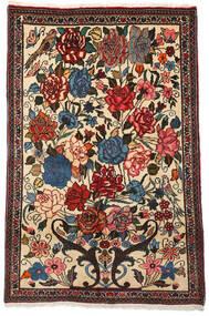 바흐티아리 Collectible 러그 100X154 정품  오리엔탈 수제 다크 브라운/베이지 (울, 페르시아/이란)